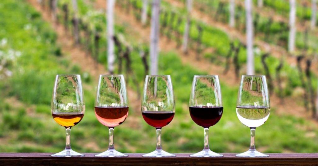 Typowe działania w turystyce winiarskiej