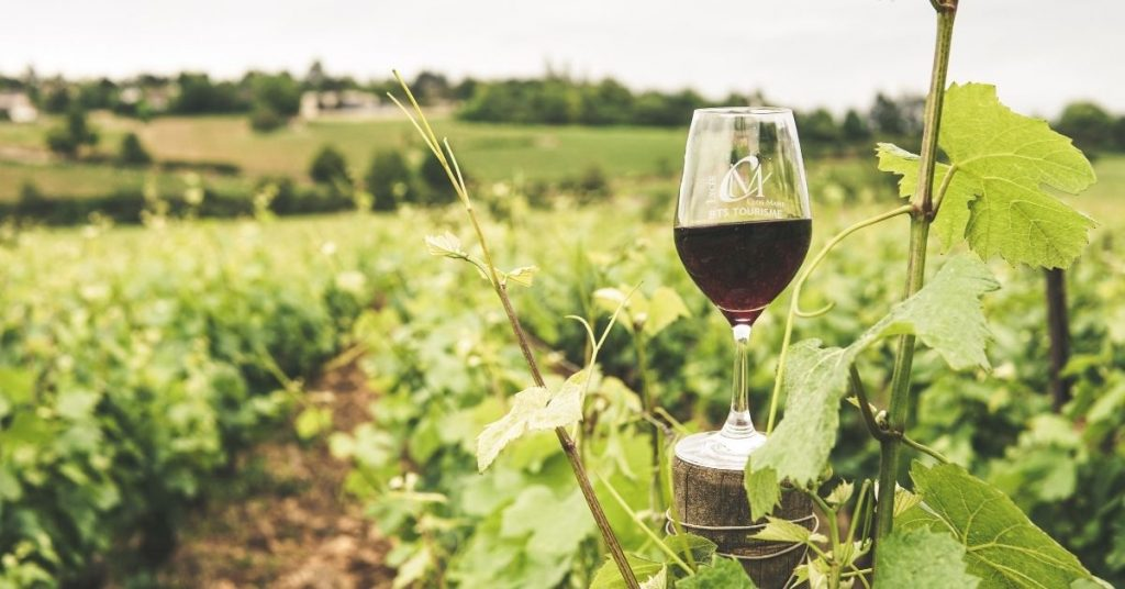 Turystyka winiarska w Hiszpanii