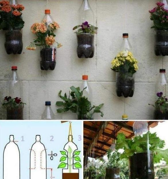La imagen tiene un atributo ALT vacío; su nombre de archivo es colgantes-de-plantas-con-botella-de-plastico.png
