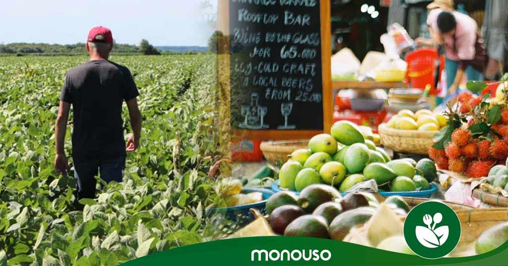 ¿Elegirías alimentos de origen local para tu restaurante?
