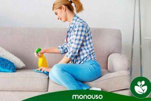 Cómo limpiar muebles tapizados