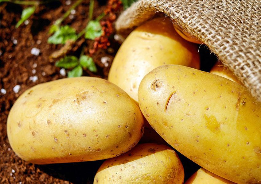 Patatas bravas, otra de las mejores tapas de España