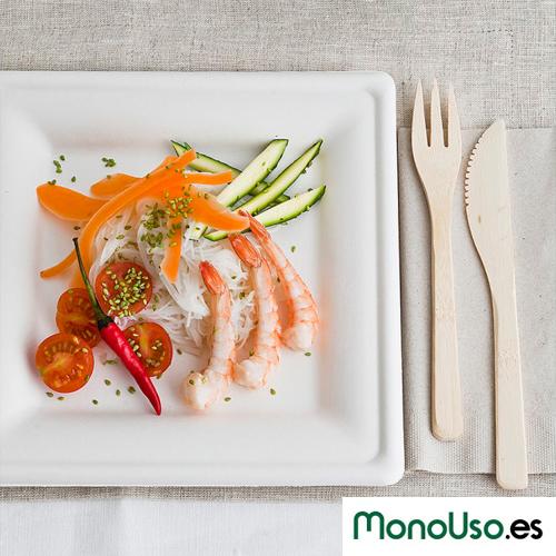 plato-ecologico-monouso