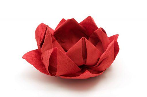 servilletas-de-papel-formas-de-plegado-1