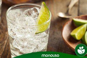 Los mejores vasos de plástico de Gin Tonic